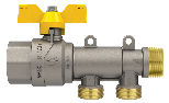 Valve with manifold first inlet